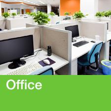 BedBug_Market-Office